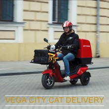 Видео обзор электрических скутеров VEGA CITY CAT DELIVERY!