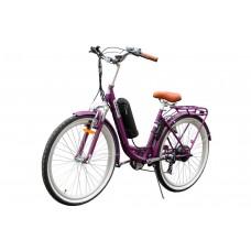 Family S (Purple)